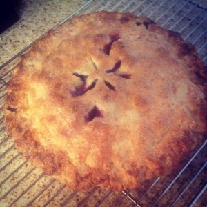 Hot Blueberry Pie fresh out of the oven